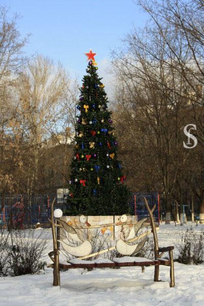 Новогодняя ёлка, Сквер влюблённых, Малаховка, фото by Svetlana Fonfrovich