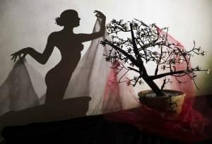 Картинки игра теней.. Теневой силуэт девушки, созданный при помощи бонсаи и лоскутов ткани