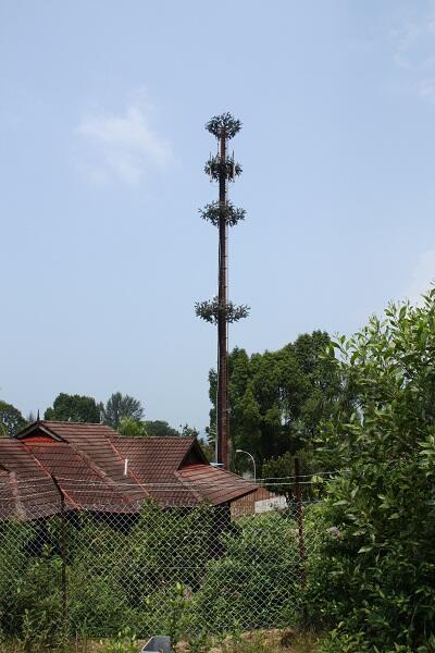 Вышка сотовой связи на Пангкоре #PhotoBySvetlanaFonfrovich