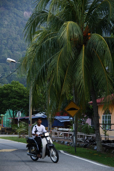 Малайская деревня