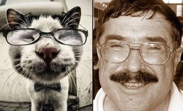 Кот в очках и Борис Бурда.