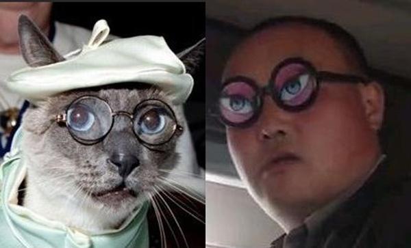 """Кот в очках и торговец из Китая (""""Очки н-н-нада?"""""""