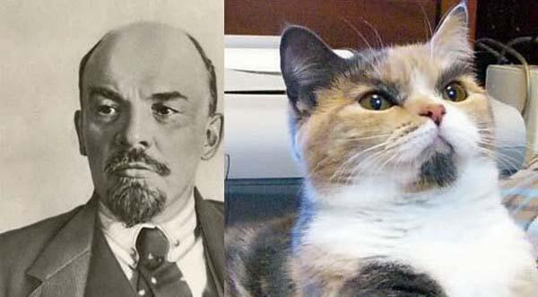 Ленин и котэ (канонический)