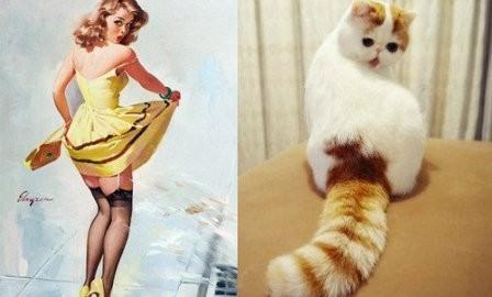 Картинки в стиле пин-ап. Девушка и котик ЧТО ЭТО
