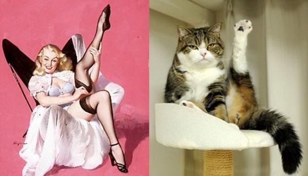 Картинки в стиле пин-ап. Девушка и котик лапка вверх