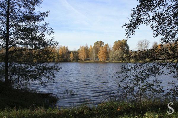 Осень на Малаховском озере, фото - Светлана Фонфрович