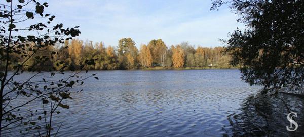 Осень на озере, фото by Svetlana Fonfrovich