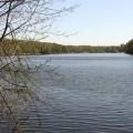 Субботник на Малаховском озере, фото - Светлана Фонфрович, 16