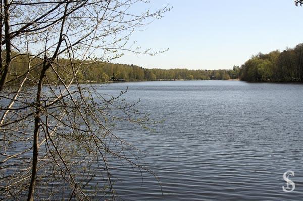 Как мы спасали Малаховское озеро