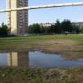 Футбол в Малаховке, фото - Светлана Фонфрович, 7