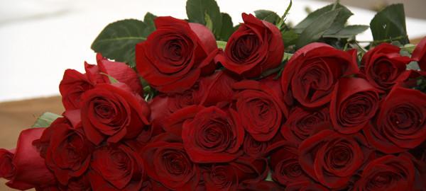Как сохранить розы свежими #PhotoByNoorySan (15)