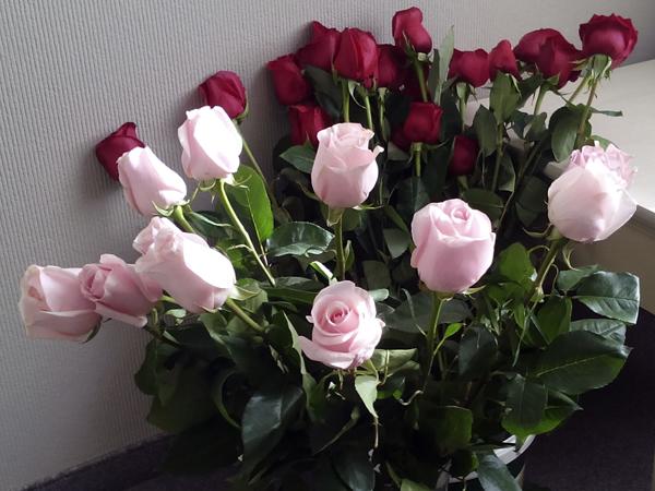 Как сохранить розы свежими #PhotoByNoorySan (7)