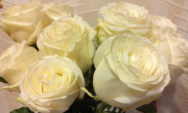 Как сохранить розы свежими #PhotoByNoorySan (9)
