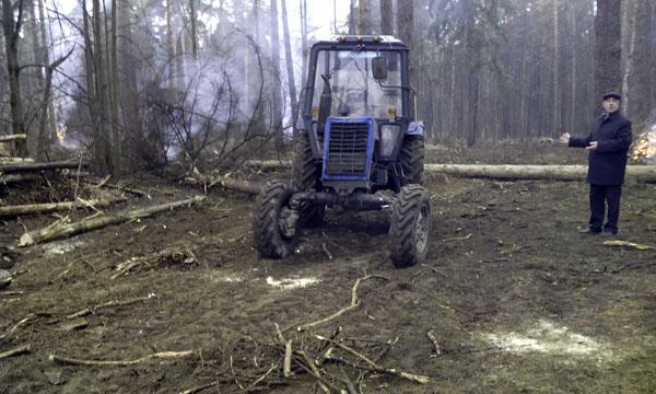 Рубка леса Плоховое Малаховка (4)