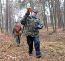 Рубка леса Плоховое в Малаховке