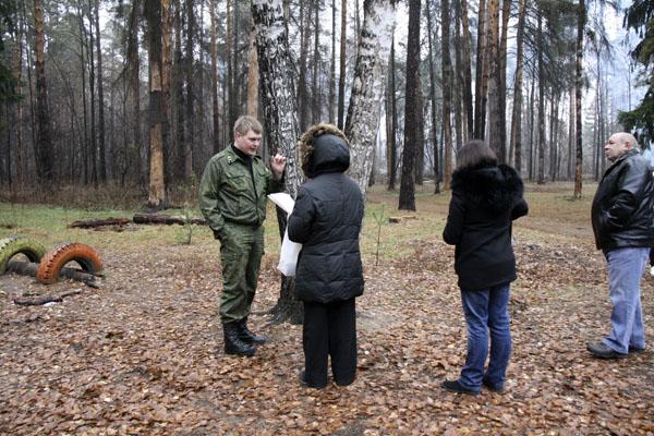 Рубка леса в Малаховке, 11.2014