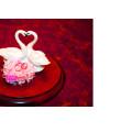Свадьба в день святого Валентина - фото Светланы Доможировой