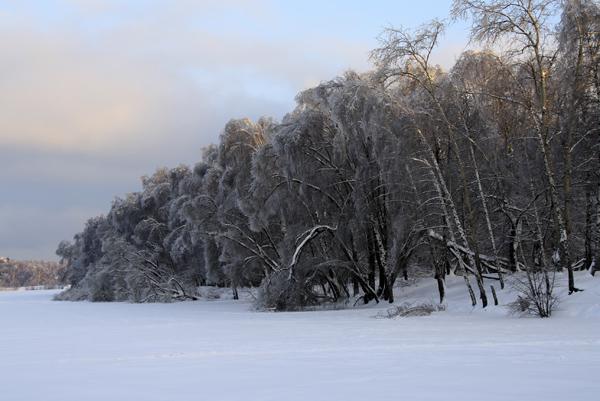 Зима на Малаховском озере - фото Светланы Доможировой