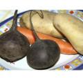 суп свекольник, как сварить свекольник, что кладут в свекольник, корнеплоды фото
