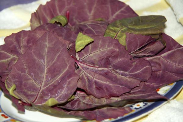 салат красный