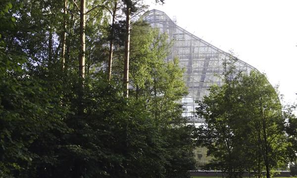 оранжерея в ботаническом саду, фото оранжереи, оранжерея фото, стеклянная оранжерея фото
