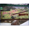 малаховка фото, малаховка болото картинка, виды малаховки фото, малаховка демотиваторы, фото малаховки, наше подмосковье участники от малаховки
