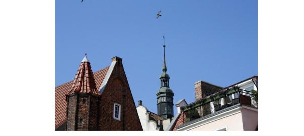 gdansk; гданьск; крыши; крыши гданьска; гданьск крыши; старинные крыши; дырявая крыша; гданьск польша; фото гданьск; гданьск фото, крыши старых домов, крыши в гданьске, крыши в польше, фото крыш, крыши картинки, старинные крыши картинки, старый гданьск, старый гданьск фото, что посмотреть в гданьске