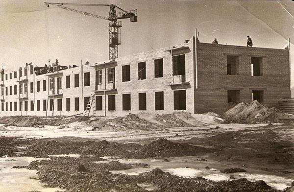 история мэз, строительство мэз, история малаховки, первые дома на мэзе