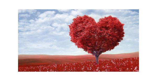 урок любви, урок любви к себе, уроки любви, уроки любви к себе, как полюбить себя, как влюбиться в себя, что такое любовь к себе, любовь к себе что это, любовь к себе хорошо или плохо, как научиться любви к себе