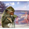 Год красной обезьяны 2016. обезьяна с гранатой