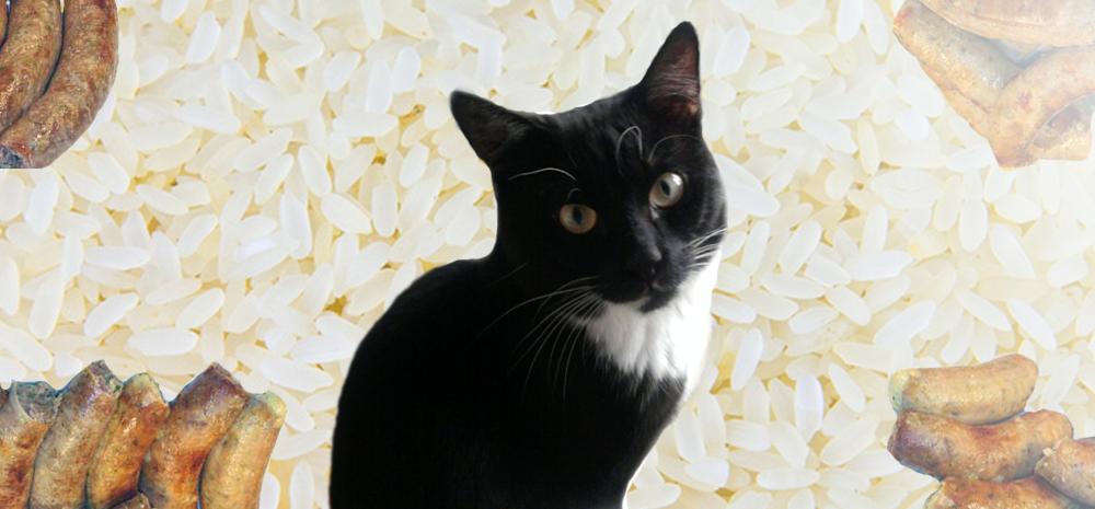 Васька, рис и колбаса