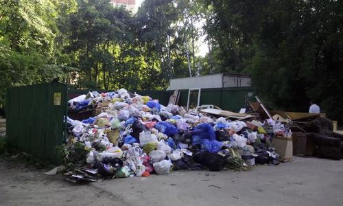малаховка мусор
