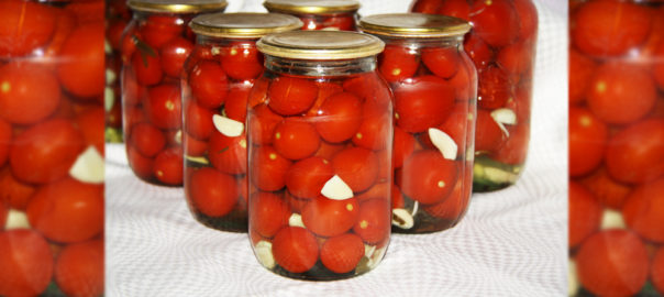 помидоры галя