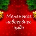 маленькое новогоднее чудо