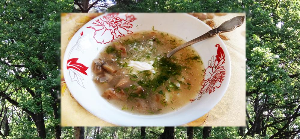 Суп груздянка