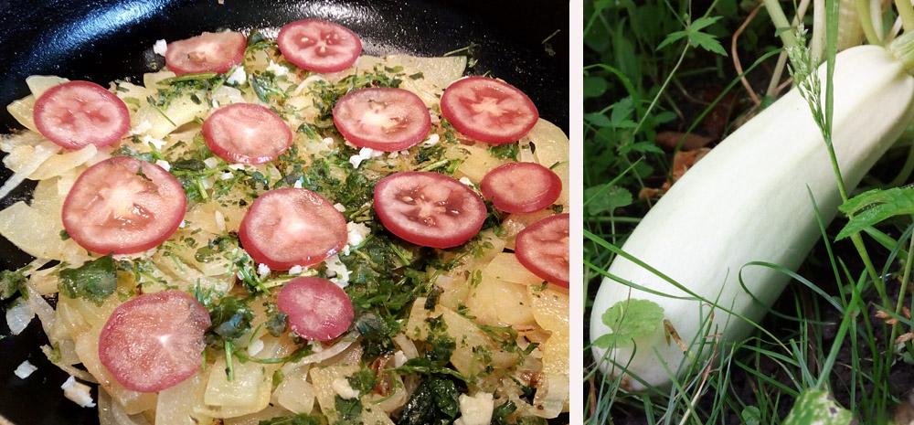 Кабачки в сметане c чесноком и помидорами